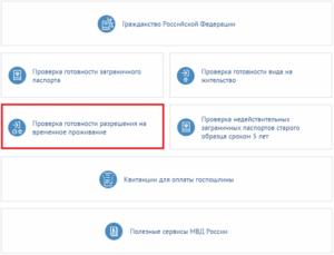 Проверка готовности гражданства рф онлайн сайт