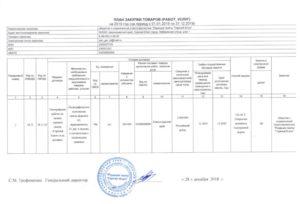 Образец заполнения плана графика закупок на 2019 год