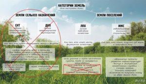 Если категория земли населенных пунктов а разрешение садоводства