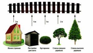 Нормы посадки домов