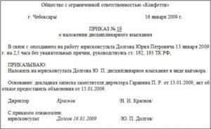 Образец приказа о наказании за потерю документов