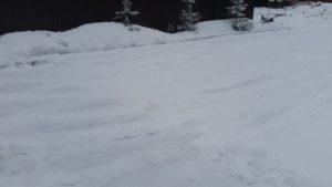 Жалоба на чистку дорог от снега