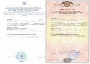 Документы подтверждающие право собственности на предмет залога автомобиль