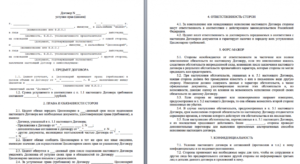 Безвозмездный договор цессии между физическими лицами по перуступке требования займа