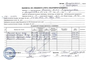 Выписка из лицевого счета квартиры 1993 года