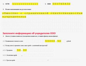 Пример заполнения заявления о регистрации ооо новая форма р11001