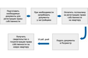 Какие документы нужны для оформления собственности в новостройке