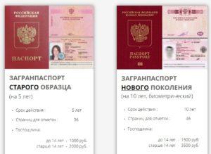 Какой загранпаспорт лучше оформить на ребенка старого или нового образца 2019