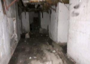 В подъезде прорвало канализацию действия жкх