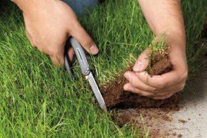 Как оформить землю в собственность если она самозахват