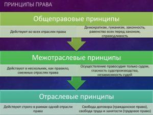 Принципы трудового права общеправовые межотраслевые отраслевые