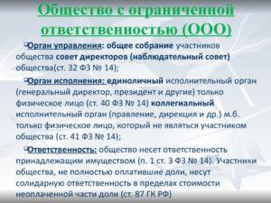 Ответственность директора ооо по долгам общества в 2019 году