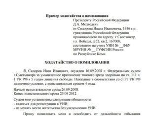 Образец прошения о помиловании президенту узбекистана от матери