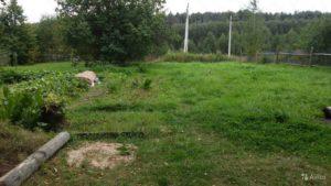 Аренда земельного участка в деревне адамовское от государства