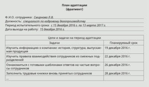План мероприятий на период прохождения испытательного срока врача
