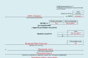 Пример приказа о принятии на работу для ип