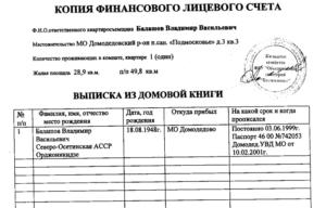 Какая информация указывается в копии лицевого счета на квартиру