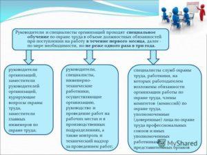 Обязанности начальника отдела землеустройства по охране труда