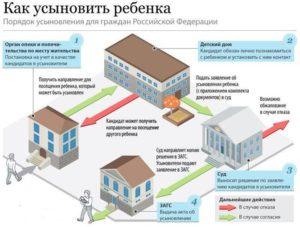 Порядок усыновления детей в россии