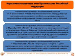 43 нормативно правовые акты издаваемые правительством рф
