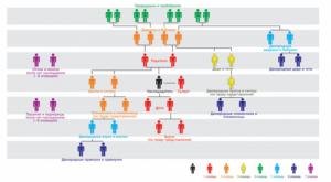 Как должно распределяться наследство между родственниками