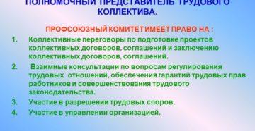 Выборы представителя трудового коллектива на предприятии не для колдоговора